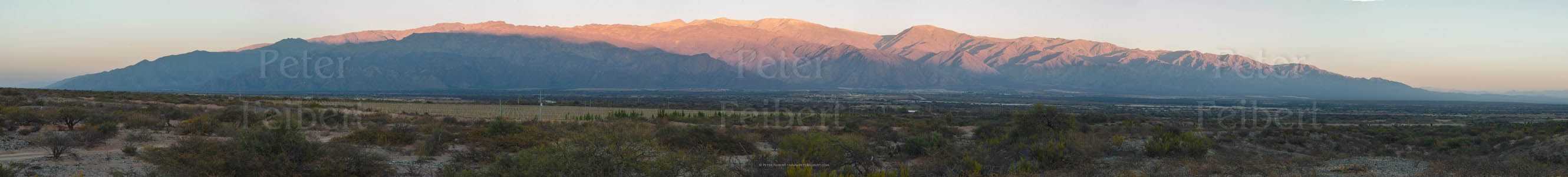 Early morning, environs of the town of Cafayate, Calchaquí valley, Salta, Argentina.