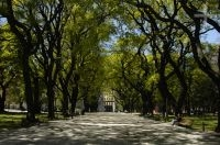 Partial view of the San Martin square, Buenos Aires, Argentina